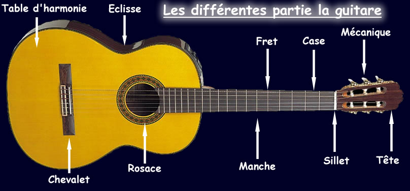 les parties de la guitare